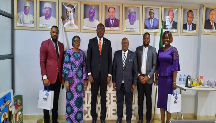African Business Partnership Necessary for Economic Diversification